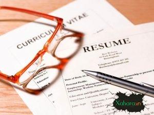 100 mẫu CV, thư xin việc đẹp, ấn tượng kèm link download miễn phí