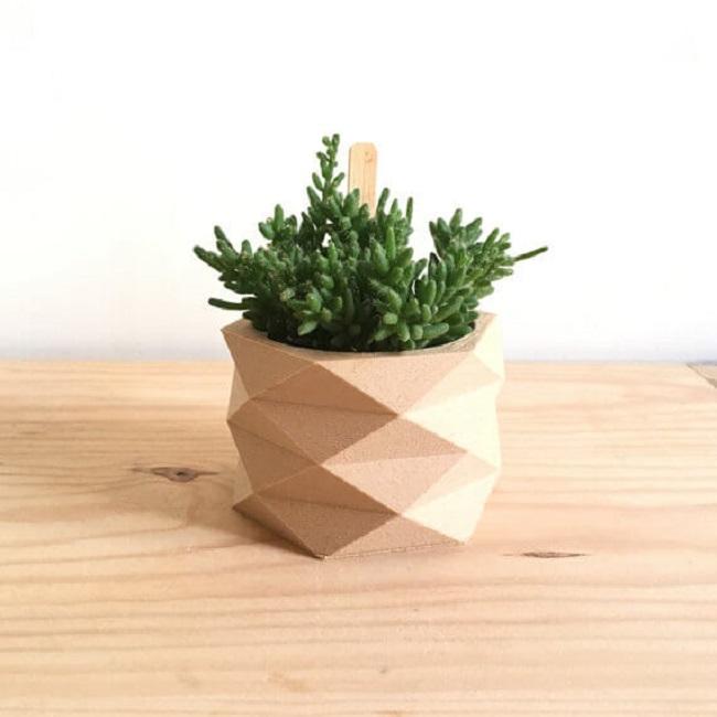 chậu cây cảnh bằng gỗ