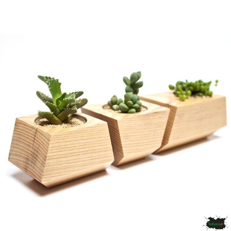 chậu hoa bằng gỗ đẹp