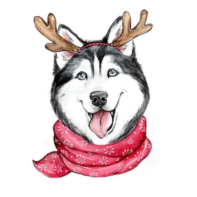 hình vẽ husky cute